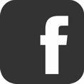 fb icona web